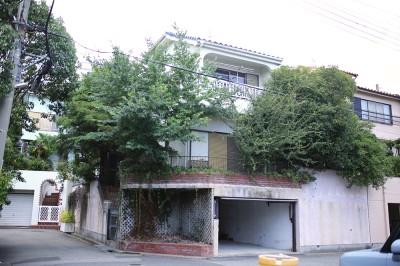 樹々に囲まれた、蔦の絡まるお家。
