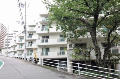 武庫川沿いに建つホワイトキューブ型マンション。