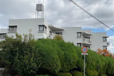 緑に囲まれた集合住宅。
